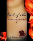 Souls of Fire (Book One of the Souls Series) by Vanessa Black