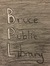 Bruce Public Library  (Fictional Library)