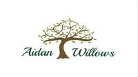 Aidan Willows