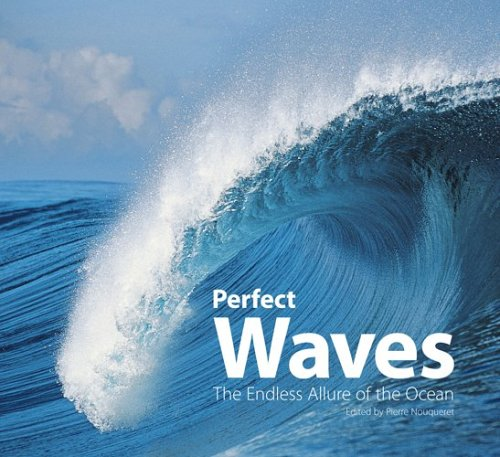 Perfect Waves: The Endless Allure of the Ocean  by  Pierre Nouqueret