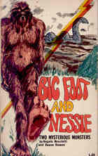 Big Foot and Nessie: Two Mysterious Monsters  by  Angelo Resciniti