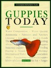 Guppies Today Stephen Glass