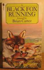 Fox Symbolism & Meaning