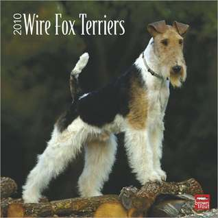 Wire Fox Terriers 2010 Square Wall  by  NOT A BOOK