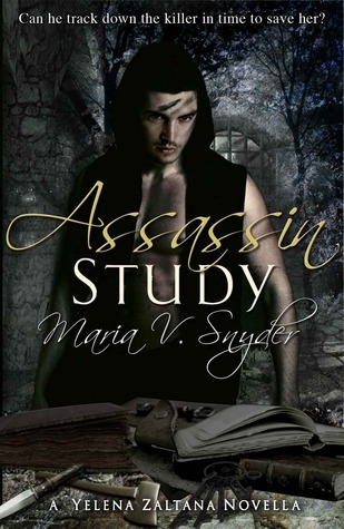 Assassin Study by Maria V Snyder