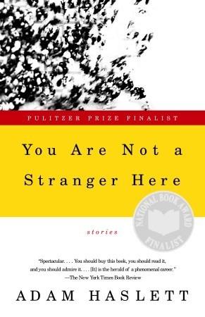 the stranger summary
