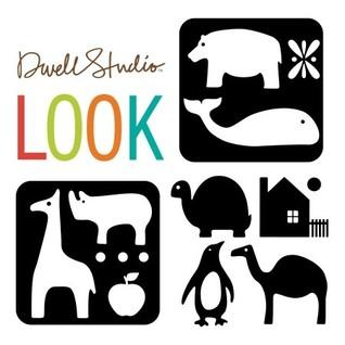 Look Dwell Studio