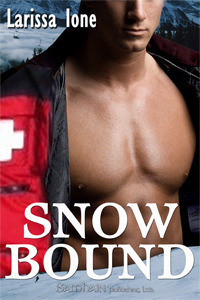 Book Review: Larissa Ione's Snowbound