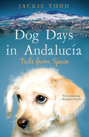 Dog Days in Andalucía: Tails from Spain