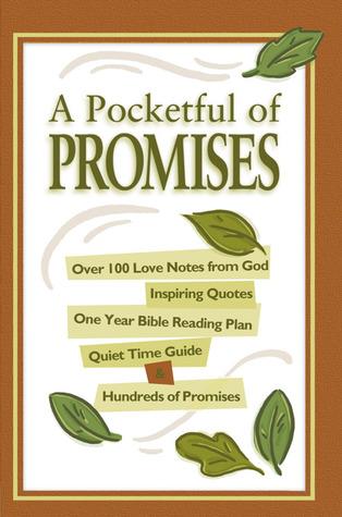 Pocketful of Promises - Original David C. Cook