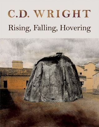Rising, Falling, Hovering (2008)