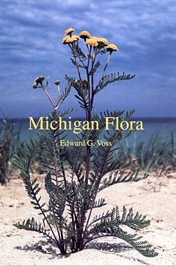 Michigan Flora Part III: Dicots Concluded Edward G. Voss