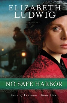 No Safe Harbor (Edge of Freedom, #1)