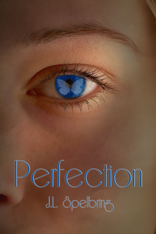 Perfection (Perfection 1)