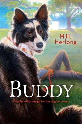 Buddy By M H Herlong Reviews Discussion Bookclubs Lists