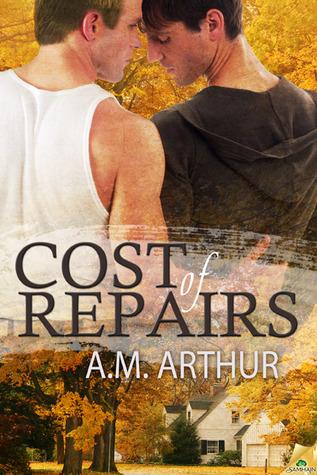 Cost of Repairs (2012)