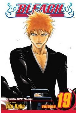 Bleach Volume 19: The Black Moon Rising (Bleach #19)