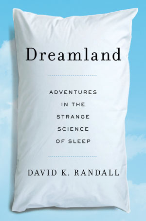 dream man book review
