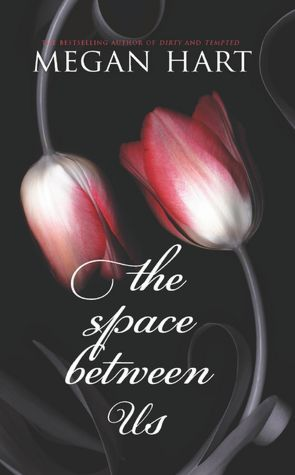 Book Review: Megan Hart's The Space Between Us