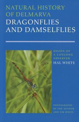 Natural History of Delmarva Dragonflies and Damselflies: Essays of a Lifelong Observer  by  Hal White