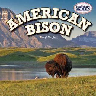 American Bison  by  Meryl Magby