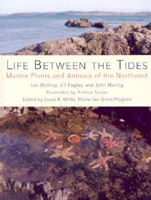 Life Between the Tides: Marine Plants and Animals of the Northeast Les Watling