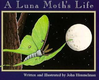 A Luna Moths Life  by  John Himmelman