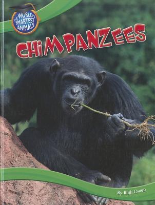 Chimpanzees Ruth Owen