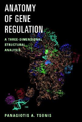 Anatomy of Gene Regulation: A Three-Dimensional Structural Analysis Panagiotis A. Tsonis
