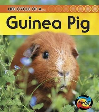 Guinea Pig Angela Royston