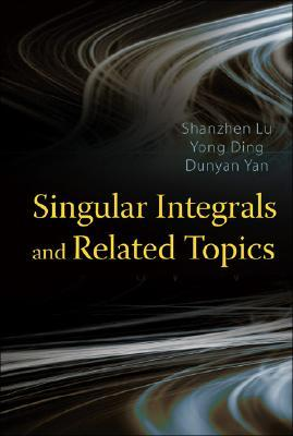 Singular Integrals And Related Topics Shanzhen Lu