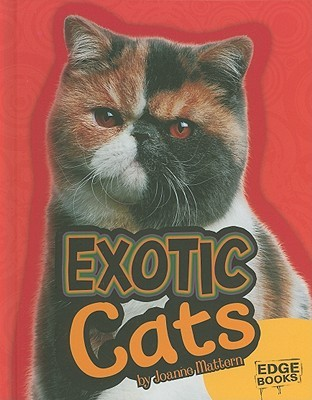 Exotic Cats  by  Joanne Mattern