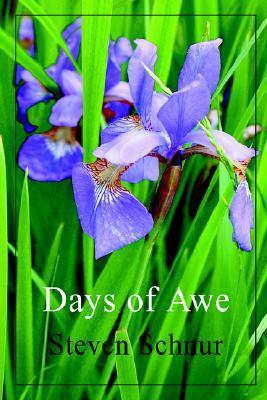 Days of Awe  by  Steven Schnur