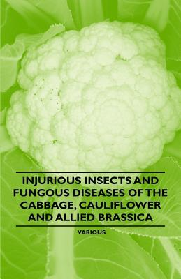 Injurious Insects and Fungous Diseases of the Cabbage, Cauliflower and Allied Brassica Various