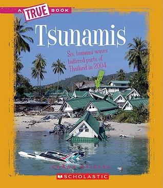 Tsunamis Chana Stiefel