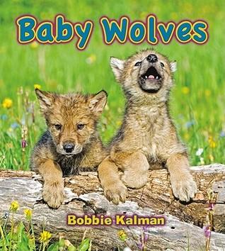 Baby Wolves  by  Bobbie Kalman