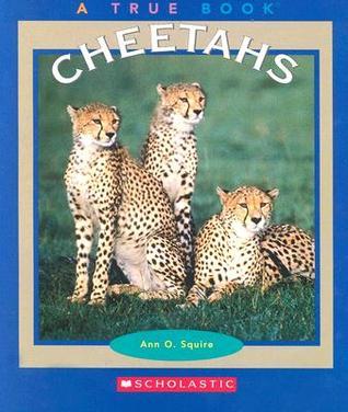 Cheetahs  by  Ann O. Squire