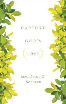 Capture Gods Love  by  Delos O. Soehren