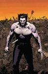 Wolverine MAX, Vol. 1: Permanent Rage