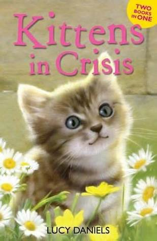 Kittens in Crisis Lucy Daniels