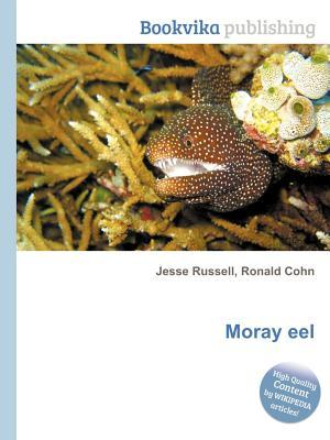 Moray Eel  by  Jesse Russell