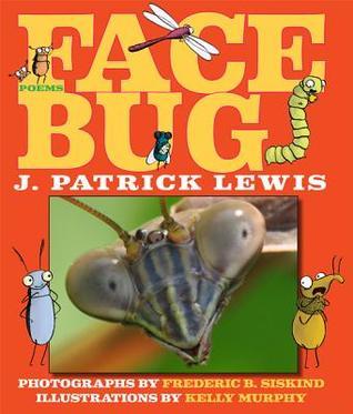 Face Bug (2013)