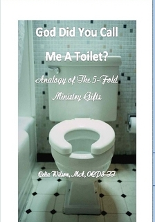 God Did You Call Me A Toilet  by  Celia Wilson