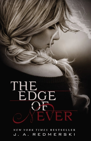 The Edge of Never book cover