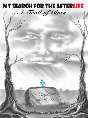 My Search for the Afterlife: A Trail of Clues  by  Sean & Dennis Spalding