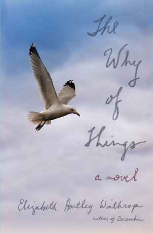 The Why of Things: A Novel