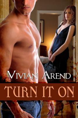 Turn It On: Turner Twins, Book 1 Vivian Arend
