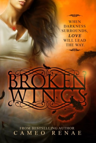 Broken Wings (Hidden Wings #2)  - Cameo Ranae