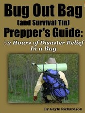 Bug Out Bag Preppers Guide: What To Pack For Those Critical First 72 Hours  by  Gayle Richardson