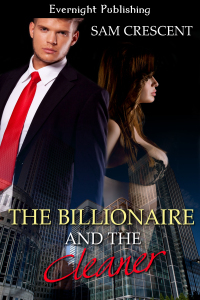 The Billionaire and the Cleaner